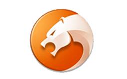 猎豹浏览器广告投放